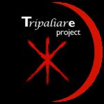tripaliare-project